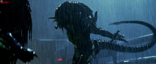 Aliens vs Predator Rquiem - gyaknak a lények