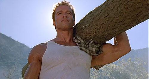 Arnold nem lesz a remakeben, mert favágónak állt