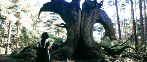 A Faun Labirintusa - Kislány áll a fa előtt